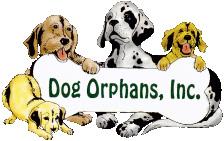 Dogs Orphans Inc logo